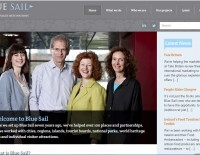 Screen grab of Blue Sail homepage